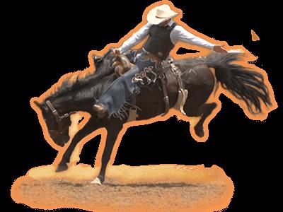 Buckin' Broncos Hero Image Inner 2