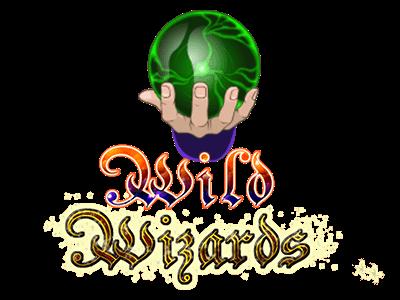 Wild Wizards Hero Image Inner 2