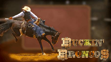 Buckin' Broncos Sidebar Image