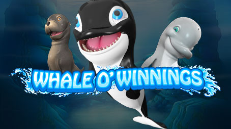 Whale O' Winnings Sidebar Image