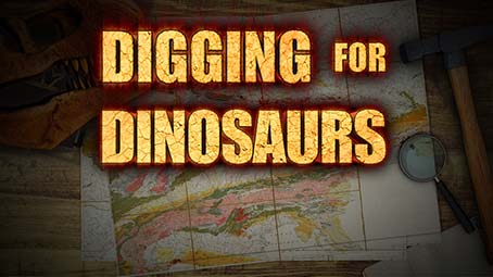 Digging For Dinosaurs