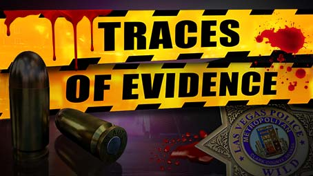 Traces of Evidence