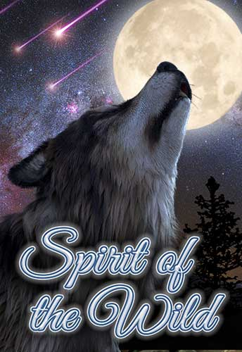 Spirit Of The Wild Info Image