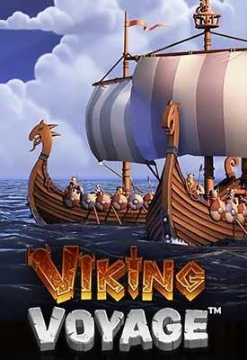 Viking Voyage Info Image