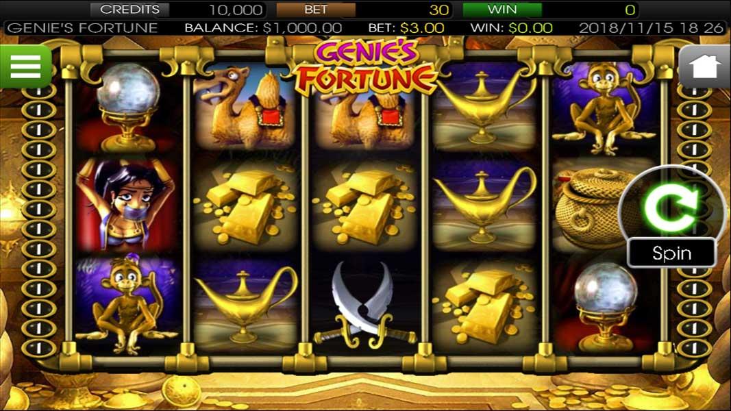 Genie's Fortune - gallery image_0